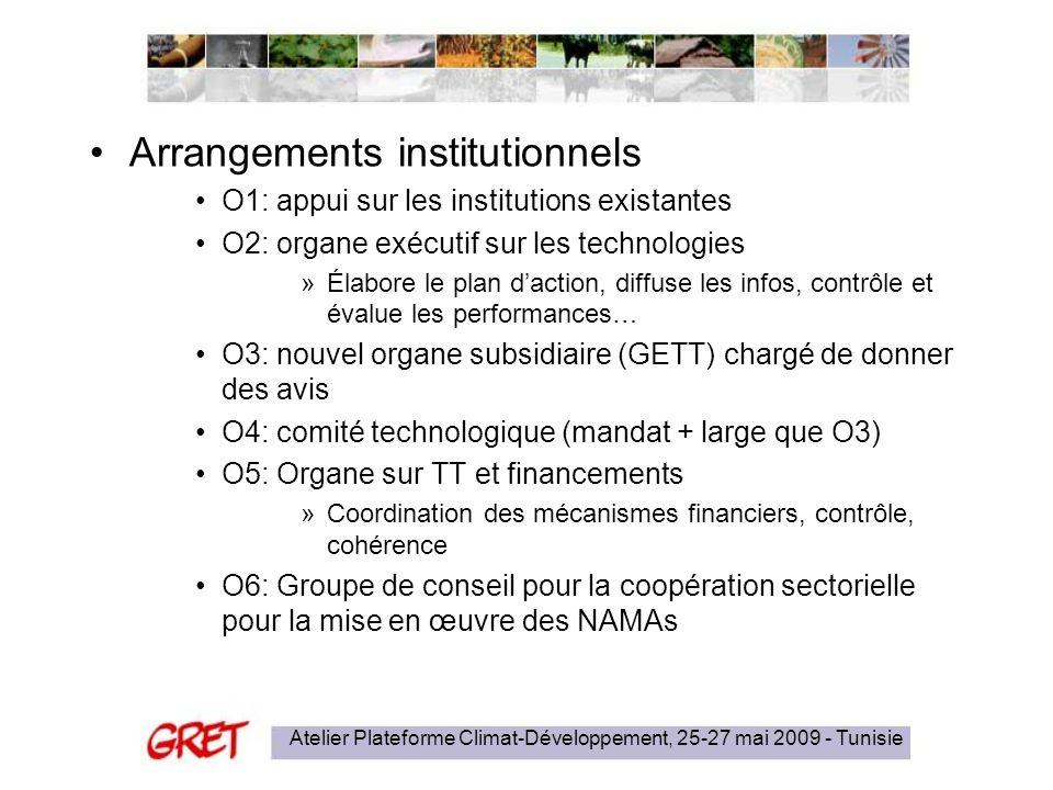 Atelier Plateforme Climat-Développement, 25-27 mai 2009 - Tunisie Arrangements institutionnels O1: appui sur les institutions existantes O2: organe ex
