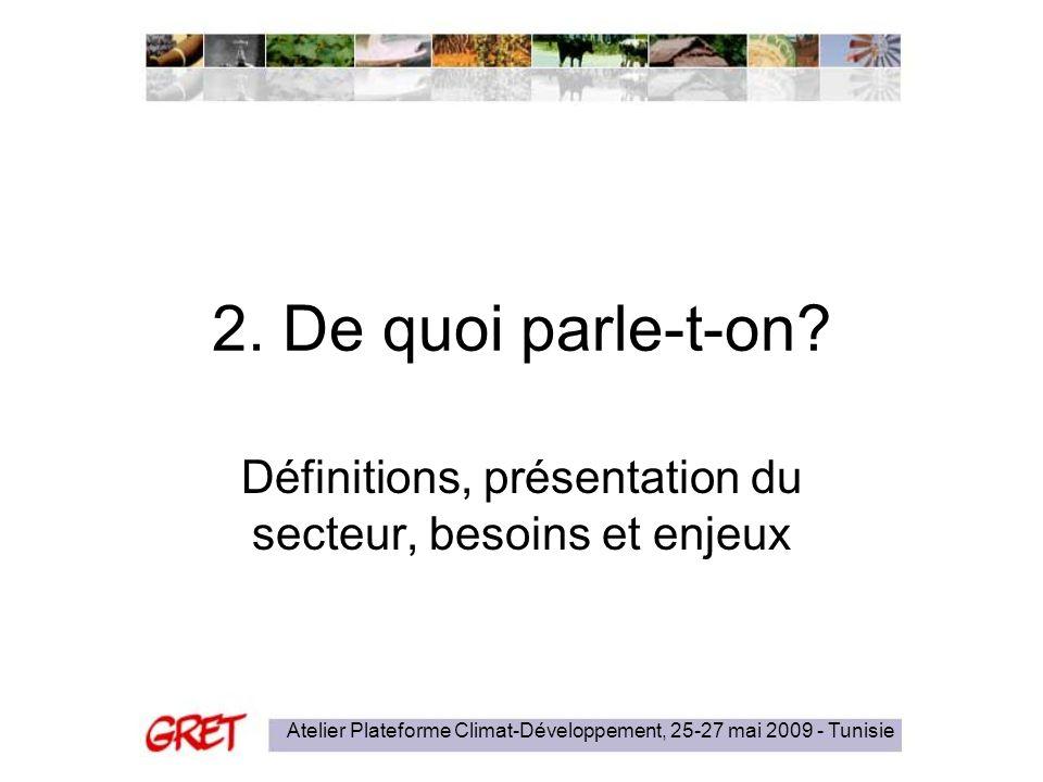 Atelier Plateforme Climat-Développement, 25-27 mai 2009 - Tunisie 2. De quoi parle-t-on? Définitions, présentation du secteur, besoins et enjeux