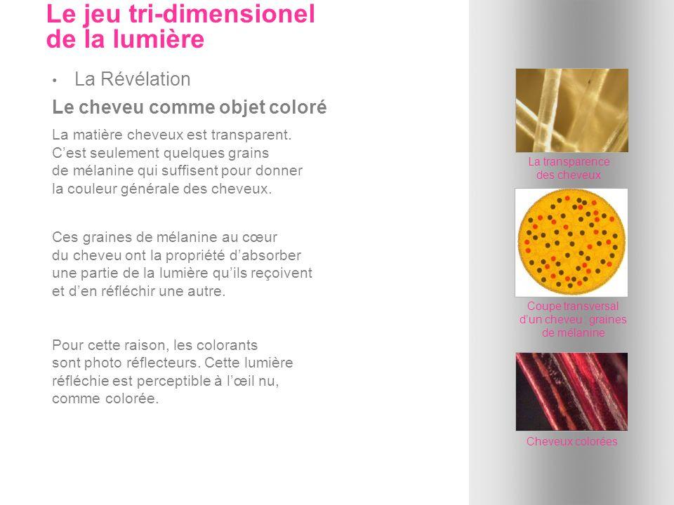 La coloration doxydation...