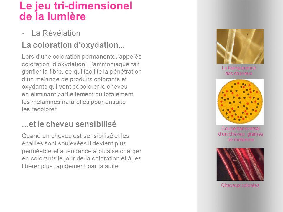 La coloration doxydation... Lors dune coloration permanente, appelée coloration doxydation, lammoniaque fait gonfler la fibre, ce qui facilite la péné