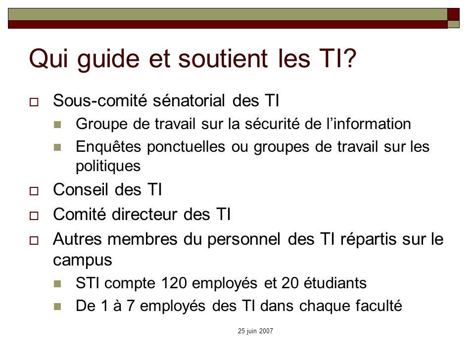 25 juin 2007 Qui guide et soutient les TI? Sous-comité sénatorial des TI Groupe de travail sur la sécurité de linformation Enquêtes ponctuelles ou gro