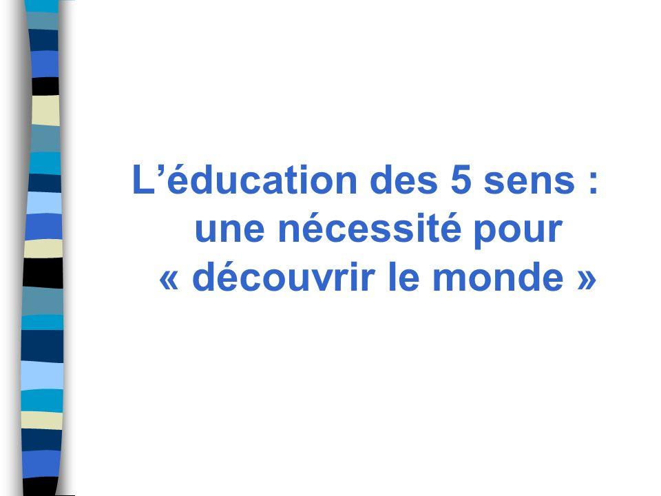 Léducation des 5 sens : une nécessité pour « découvrir le monde »