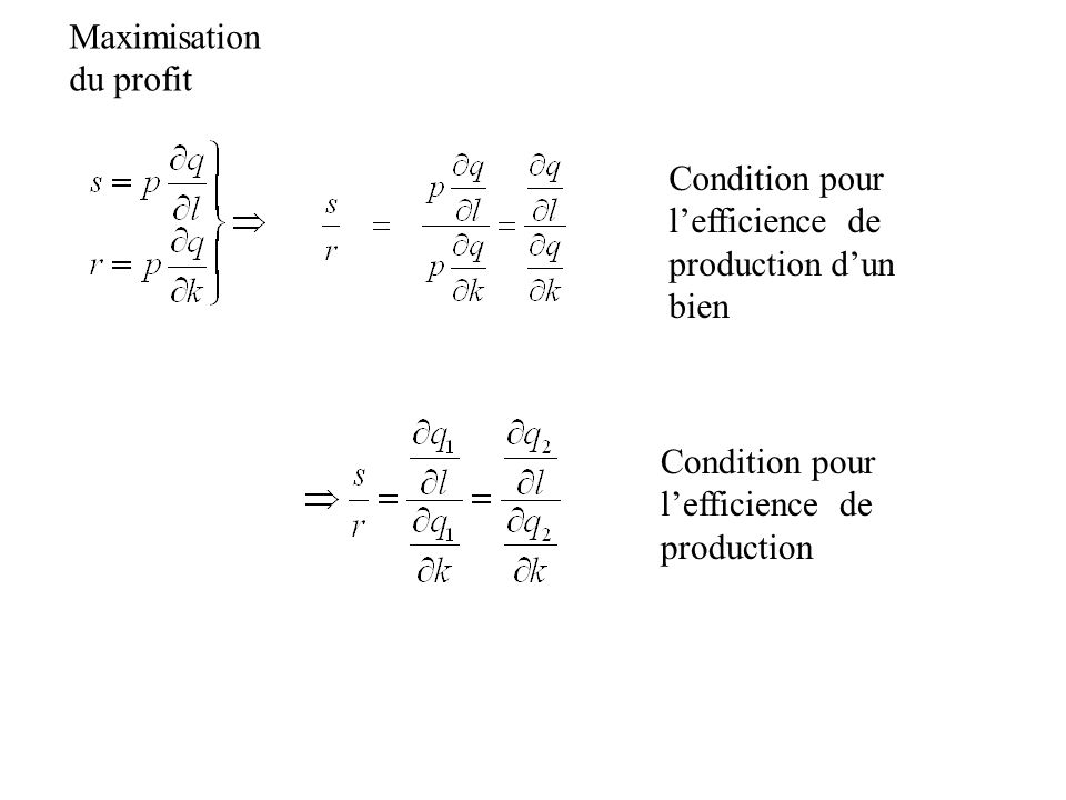 Maximisation du profit Condition pour lefficience de production Condition pour lefficience de production dun bien