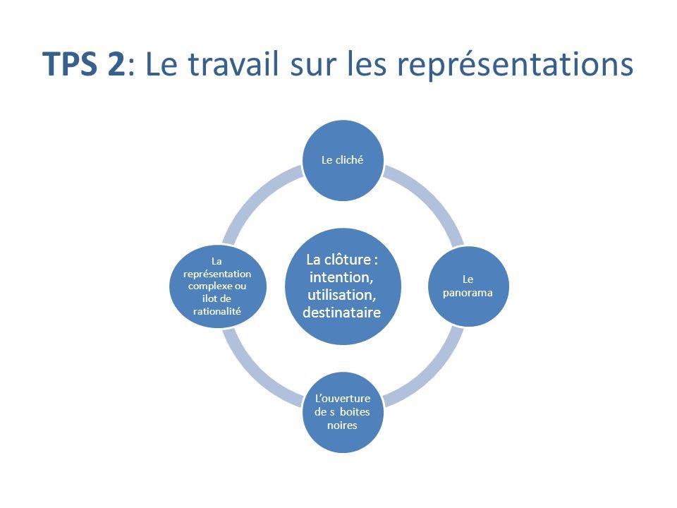 TPS 2: Le travail sur les représentations