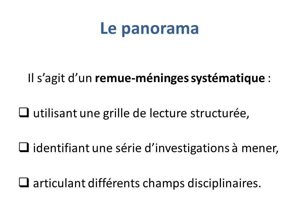 Le panorama Il sagit dun remue-méninges systématique : utilisant une grille de lecture structurée, identifiant une série dinvestigations à mener, articulant différents champs disciplinaires.
