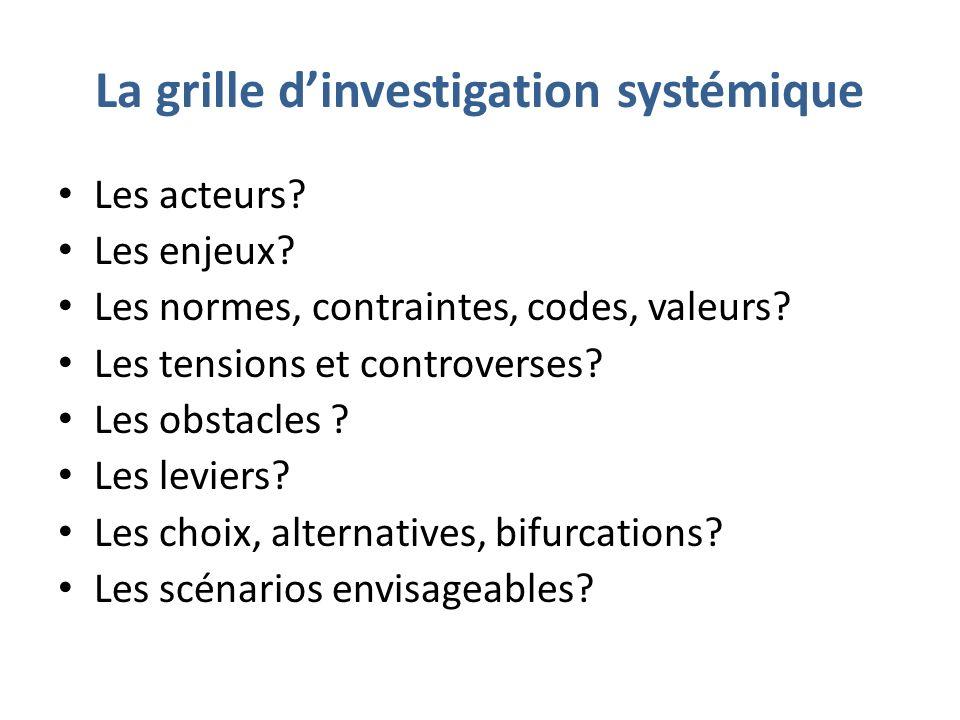 La grille dinvestigation systémique Les acteurs. Les enjeux.