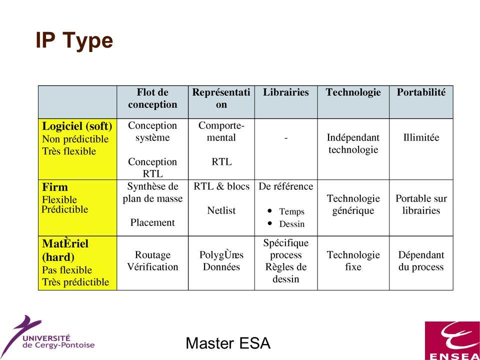 Master ESA IP Type