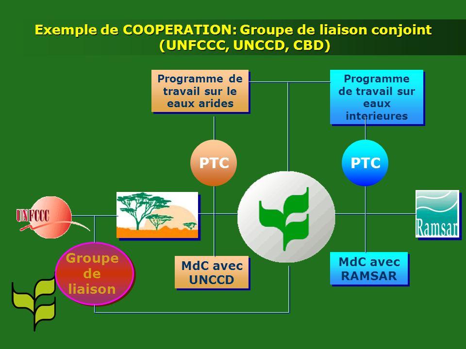 Exemple de COOPERATION: Groupe de liaison conjoint (UNFCCC, UNCCD, CBD) Programme de travail sur le eaux arides Programme de travail sur eaux interieures PTC MdC avec UNCCD MdC avec RAMSAR Groupe de liaison Groupe de liaison