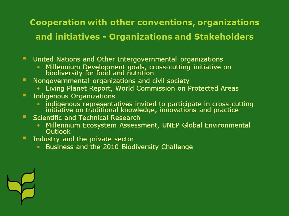 Cooperation with other conventions, organizations and initiatives - Organizations and Stakeholders United Nations and Other Intergovernmental organiza