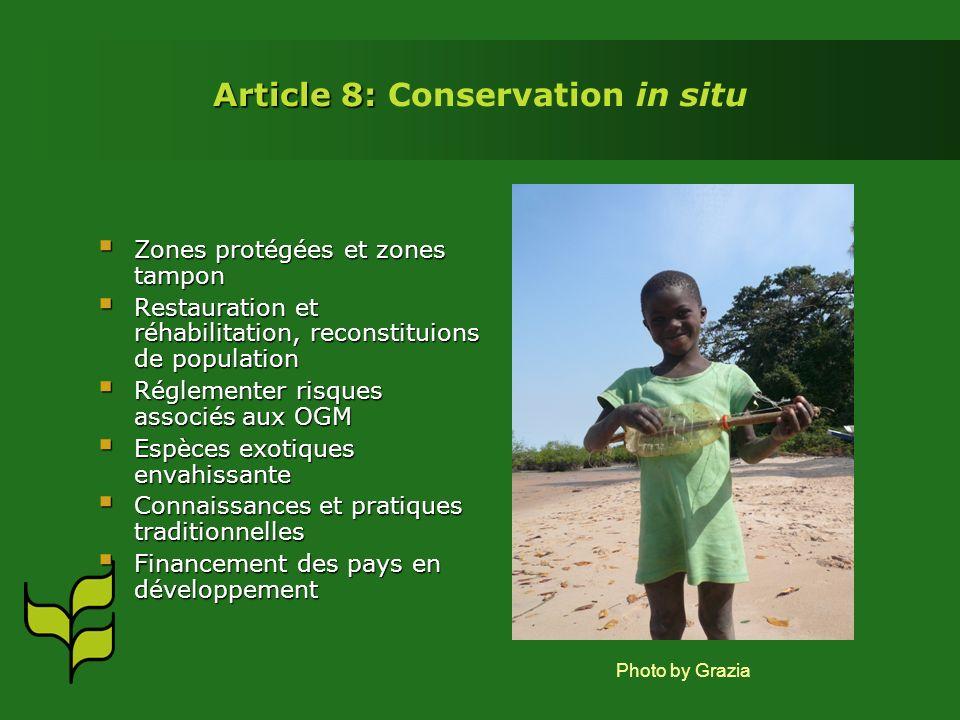 Article 8: Article 8: Conservation in situ Zones protégées et zones tampon Zones protégées et zones tampon Restauration et réhabilitation, reconstituions de population Restauration et réhabilitation, reconstituions de population Réglementer risques associés aux OGM Réglementer risques associés aux OGM Espèces exotiques envahissante Espèces exotiques envahissante Connaissances et pratiques traditionnelles Connaissances et pratiques traditionnelles Financement des pays en développement Financement des pays en développement Photo by Grazia