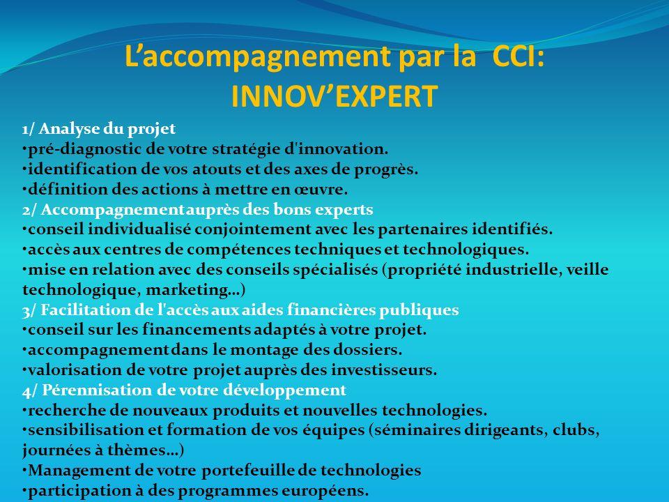 1/ Analyse du projet pré-diagnostic de votre stratégie d innovation.