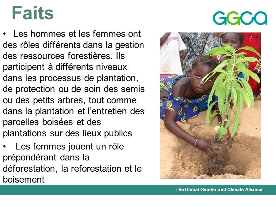 The Global Gender and Climate Alliance Faits Les hommes et les femmes ont des rôles différents dans la gestion des ressources forestières. Ils partici