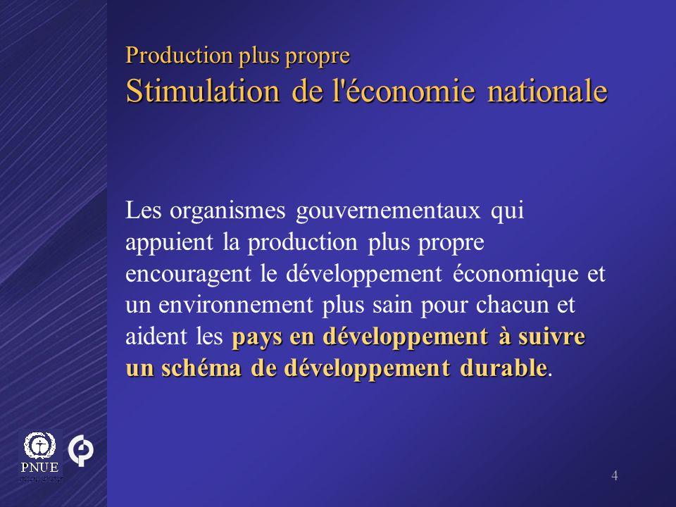 4 Production plus propre Stimulation de l'économie nationale pays en développement à suivre un schéma de développement durable Les organismes gouverne