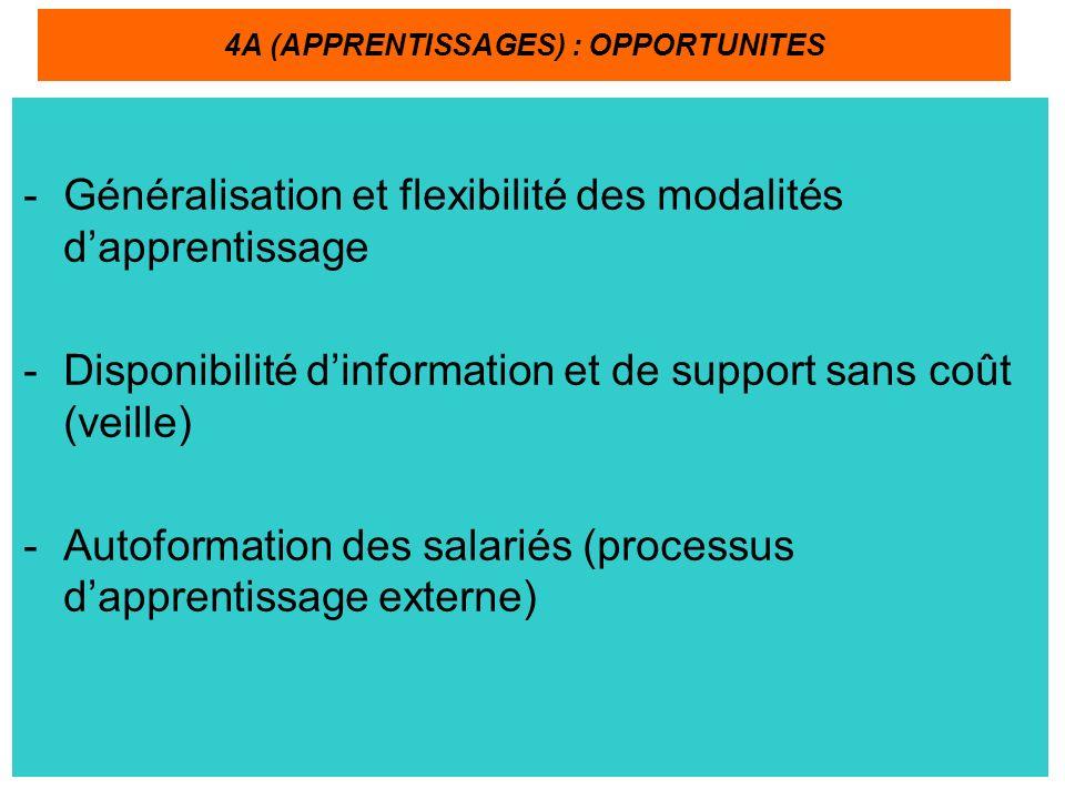 -Généralisation et flexibilité des modalités dapprentissage -Disponibilité dinformation et de support sans coût (veille) -Autoformation des salariés (processus dapprentissage externe) 4A (APPRENTISSAGES) : OPPORTUNITES