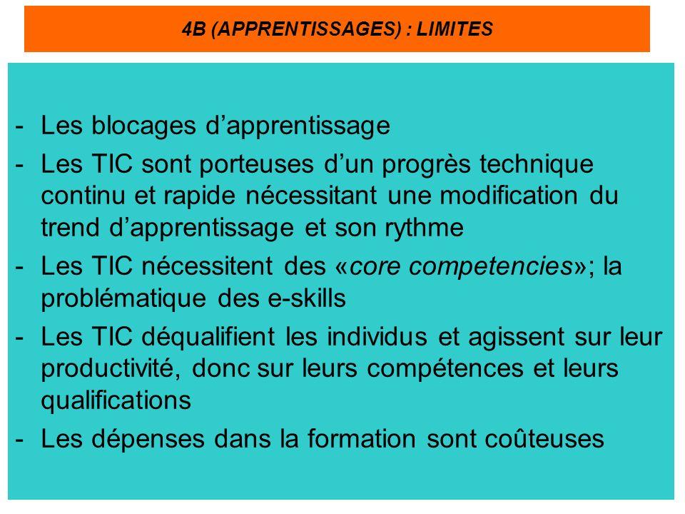 -Les blocages dapprentissage -Les TIC sont porteuses dun progrès technique continu et rapide nécessitant une modification du trend dapprentissage et son rythme -Les TIC nécessitent des «core competencies»; la problématique des e-skills -Les TIC déqualifient les individus et agissent sur leur productivité, donc sur leurs compétences et leurs qualifications -Les dépenses dans la formation sont coûteuses 4B (APPRENTISSAGES) : LIMITES