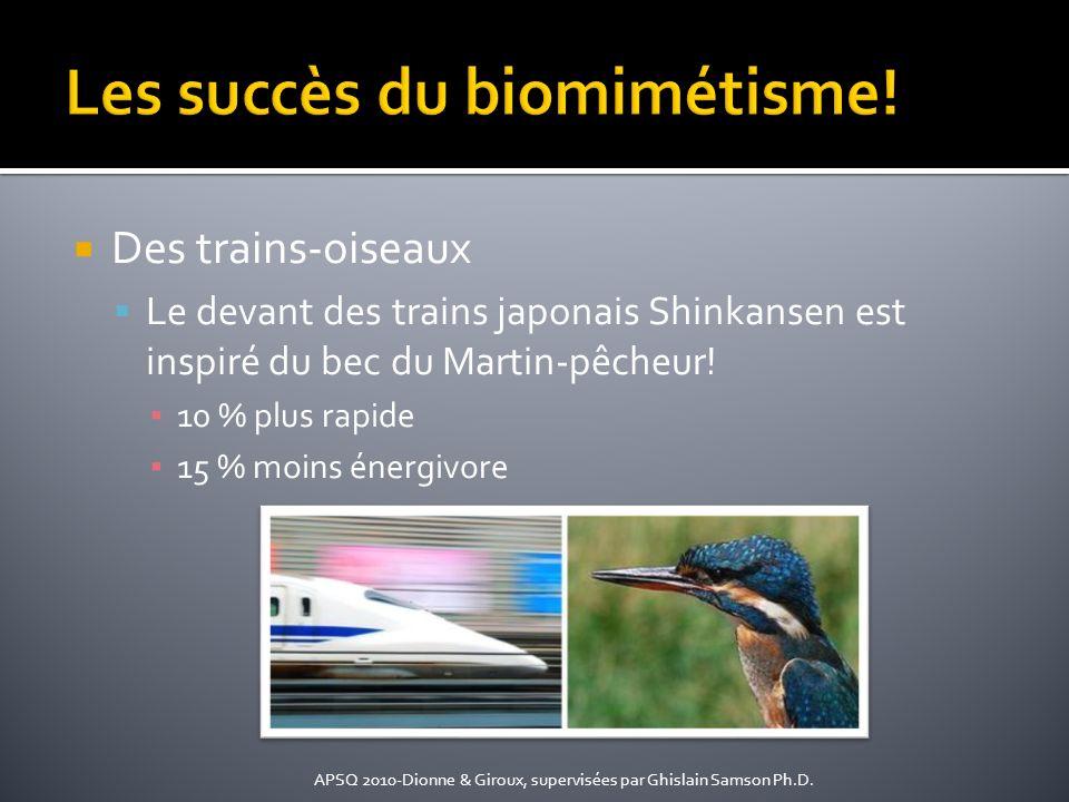 Des trains-oiseaux Le devant des trains japonais Shinkansen est inspiré du bec du Martin-pêcheur! 10 % plus rapide 15 % moins énergivore APSQ 2010-Dio