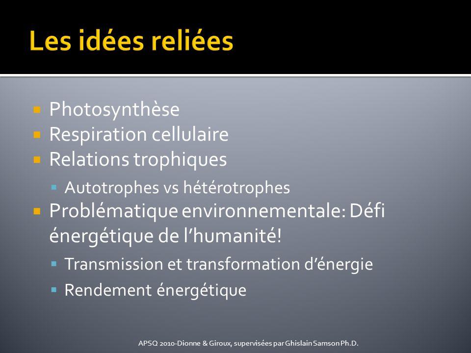 Photosynthèse Respiration cellulaire Relations trophiques Autotrophes vs hétérotrophes Problématique environnementale: Défi énergétique de lhumanité!