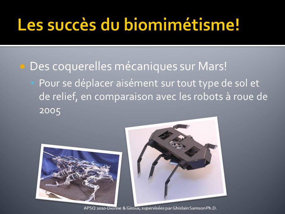 Des coquerelles mécaniques sur Mars! Pour se déplacer aisément sur tout type de sol et de relief, en comparaison avec les robots à roue de 2005 APSQ 2