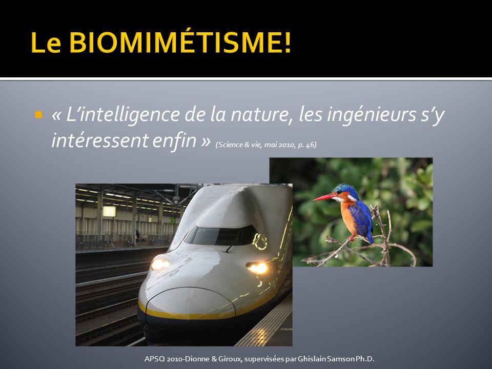 « Lintelligence de la nature, les ingénieurs sy intéressent enfin » (Science & vie, mai 2010, p. 46) APSQ 2010-Dionne & Giroux, supervisées par Ghisla