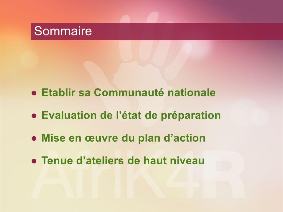 Sommaire Etablir sa Communauté nationale Evaluation de létat de préparation Mise en œuvre du plan daction Tenue dateliers de haut niveau