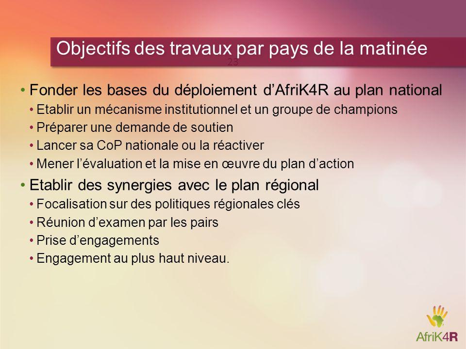 Fonder les bases du déploiement dAfriK4R au plan national Etablir un mécanisme institutionnel et un groupe de champions Préparer une demande de soutie