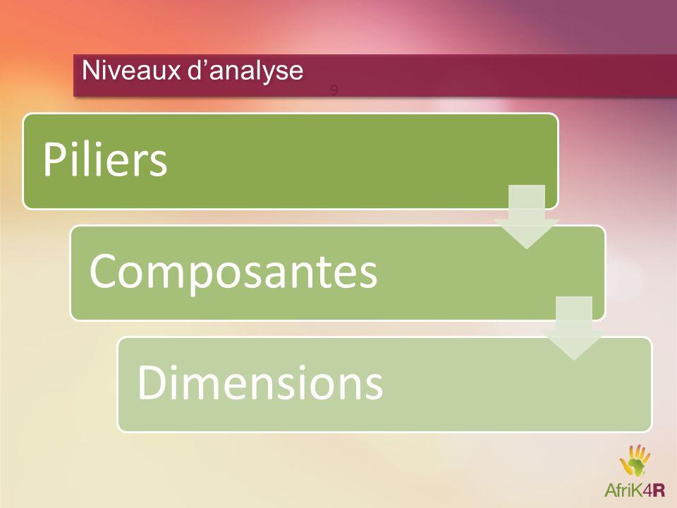 PiliersComposantesDimensions 9 Niveaux danalyse