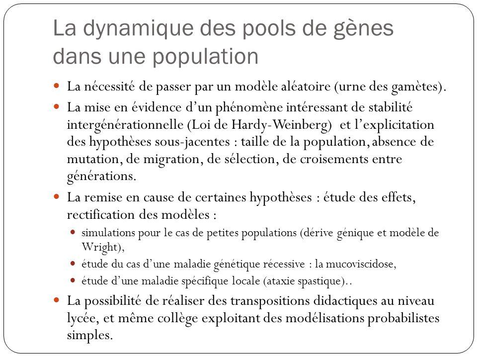 La dynamique des pools de gènes dans une population La nécessité de passer par un modèle aléatoire (urne des gamètes). La mise en évidence dun phénomè