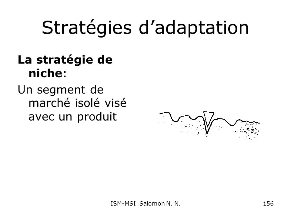 Stratégies dadaptation La stratégie de niche: Un segment de marché isolé visé avec un produit 156ISM-MSI Salomon N. N.