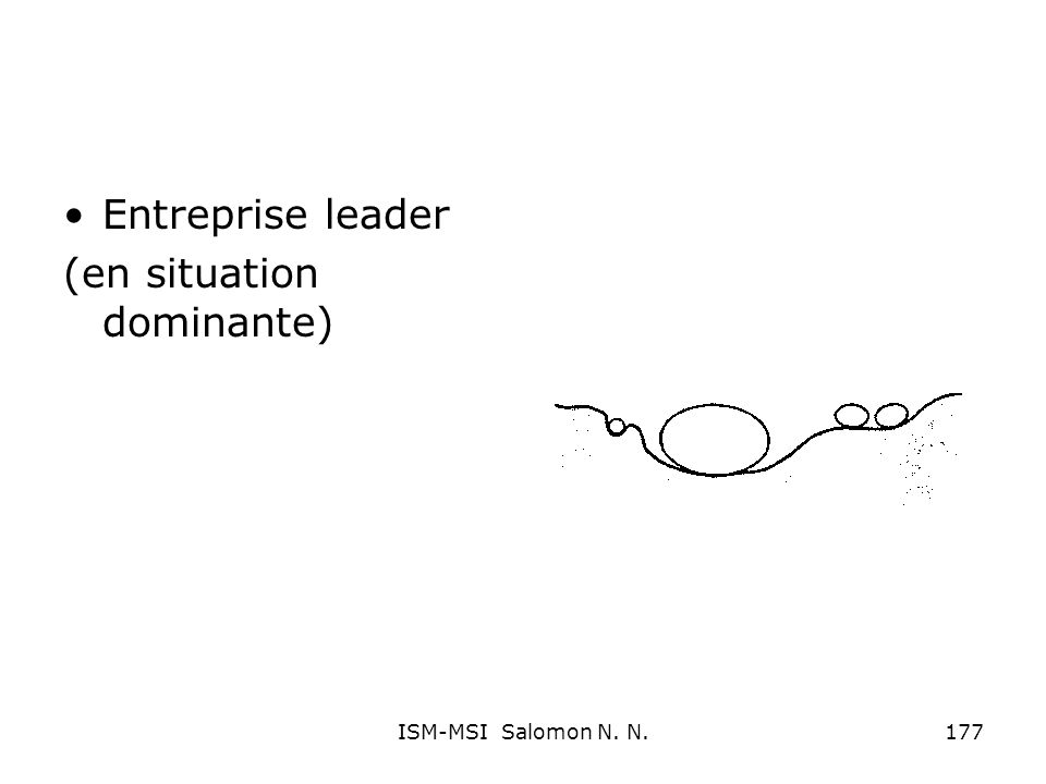 Entreprise leader (en situation dominante) 177ISM-MSI Salomon N. N.