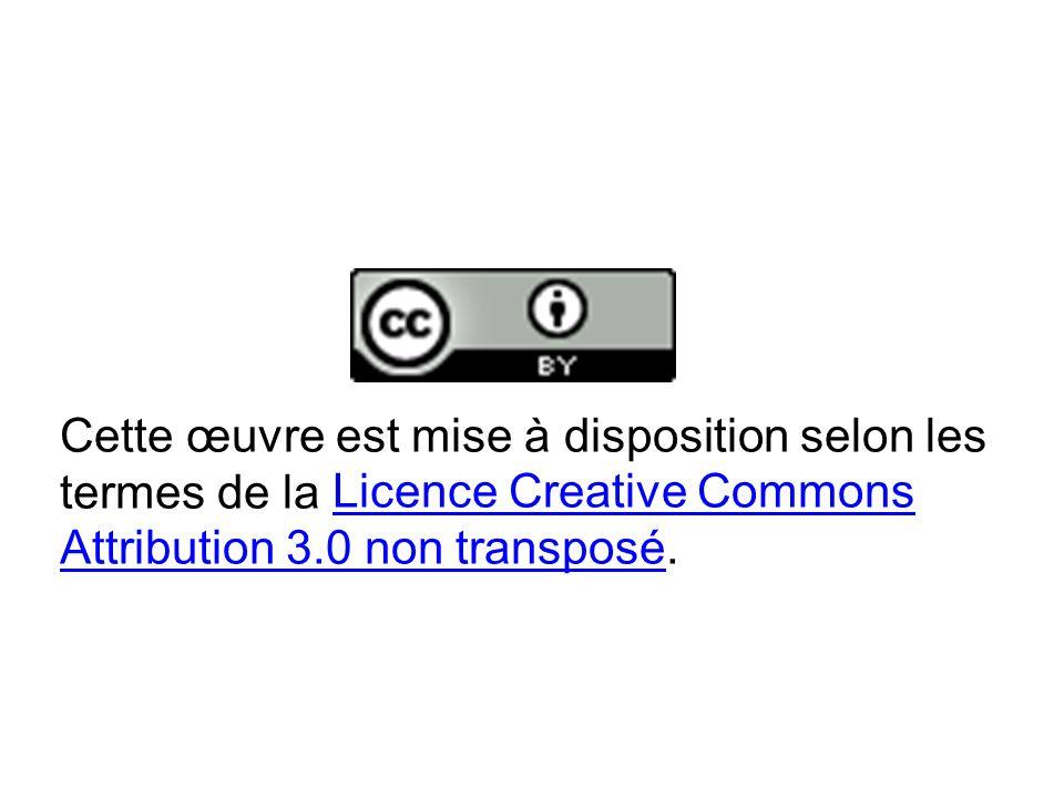 Cette œuvre est mise à disposition selon les termes de la Licence Creative Commons Attribution 3.0 non transposé.Licence Creative Commons Attribution 3.0 non transposé