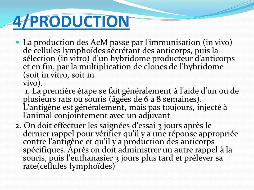 4/PRODUCTION La production des AcM passe par l'immunisation (in vivo) de cellules lymphoïdes sécrétant des anticorps, puis la sélection (in vitro) d'u