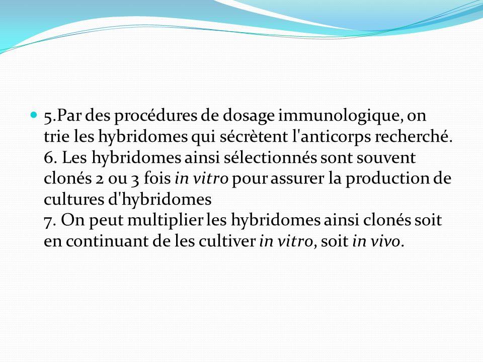 5.Par des procédures de dosage immunologique, on trie les hybridomes qui sécrètent l'anticorps recherché. 6. Les hybridomes ainsi sélectionnés sont so