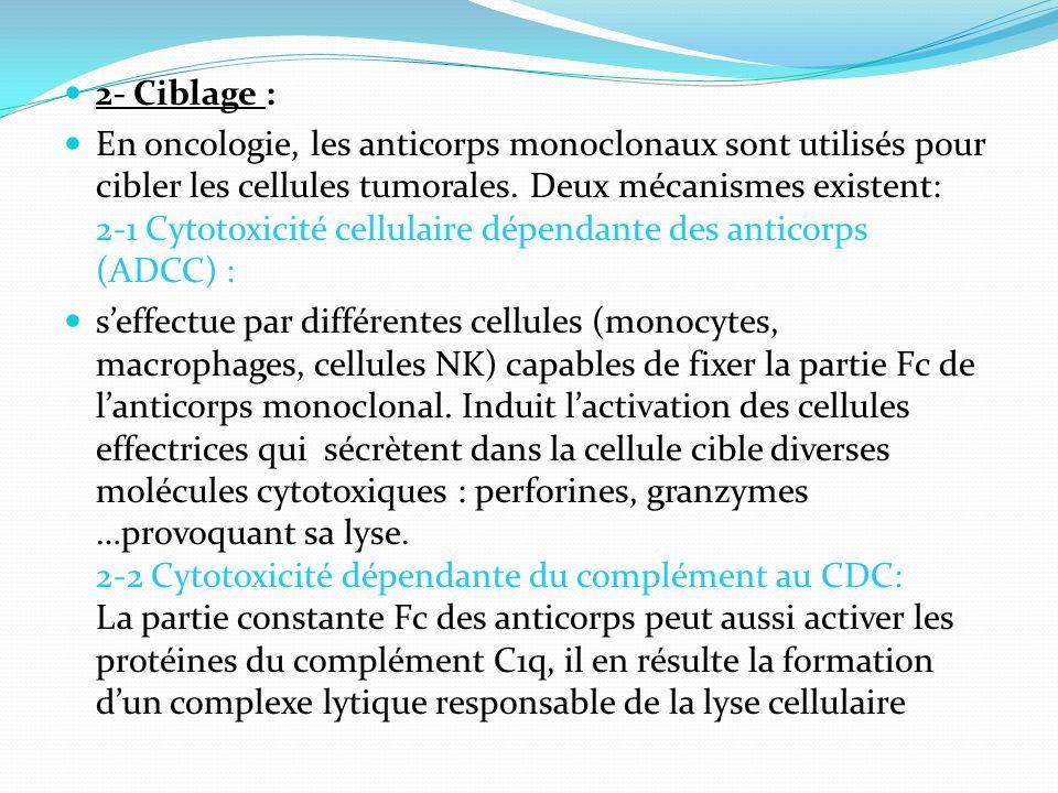 2- Ciblage : En oncologie, les anticorps monoclonaux sont utilisés pour cibler les cellules tumorales. Deux mécanismes existent: 2-1 Cytotoxicité cell