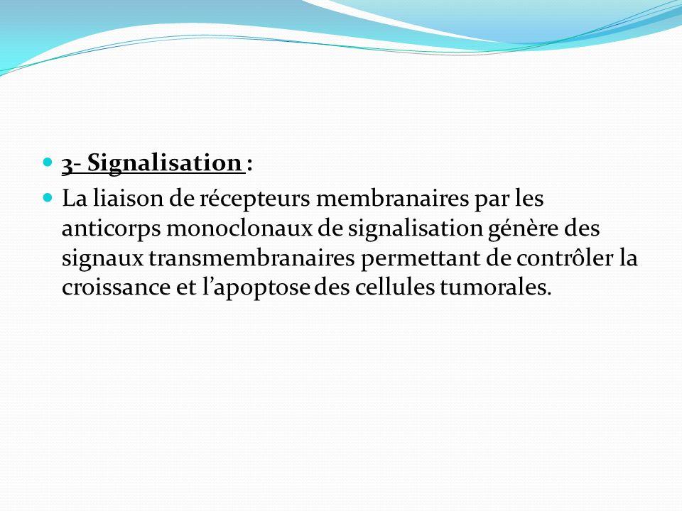 3- Signalisation : La liaison de récepteurs membranaires par les anticorps monoclonaux de signalisation génère des signaux transmembranaires permettan