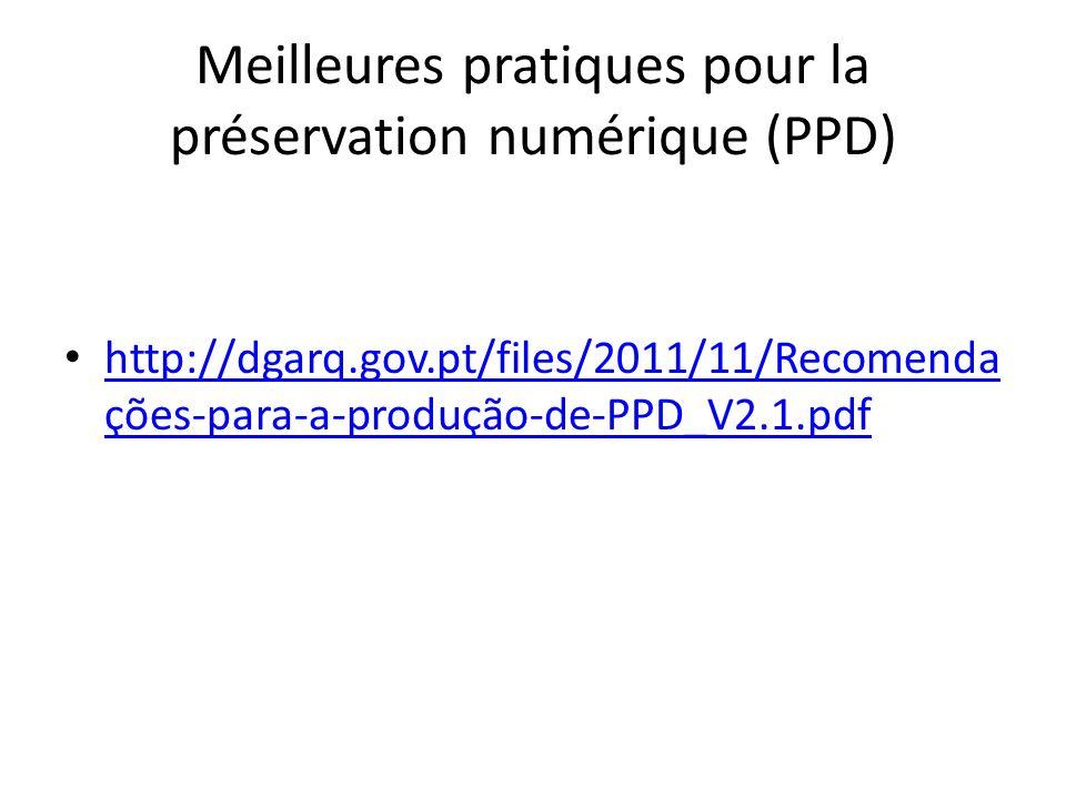 Meilleures pratiques pour la préservation numérique (PPD) http://dgarq.gov.pt/files/2011/11/Recomenda ções-para-a-produção-de-PPD_V2.1.pdf http://dgarq.gov.pt/files/2011/11/Recomenda ções-para-a-produção-de-PPD_V2.1.pdf