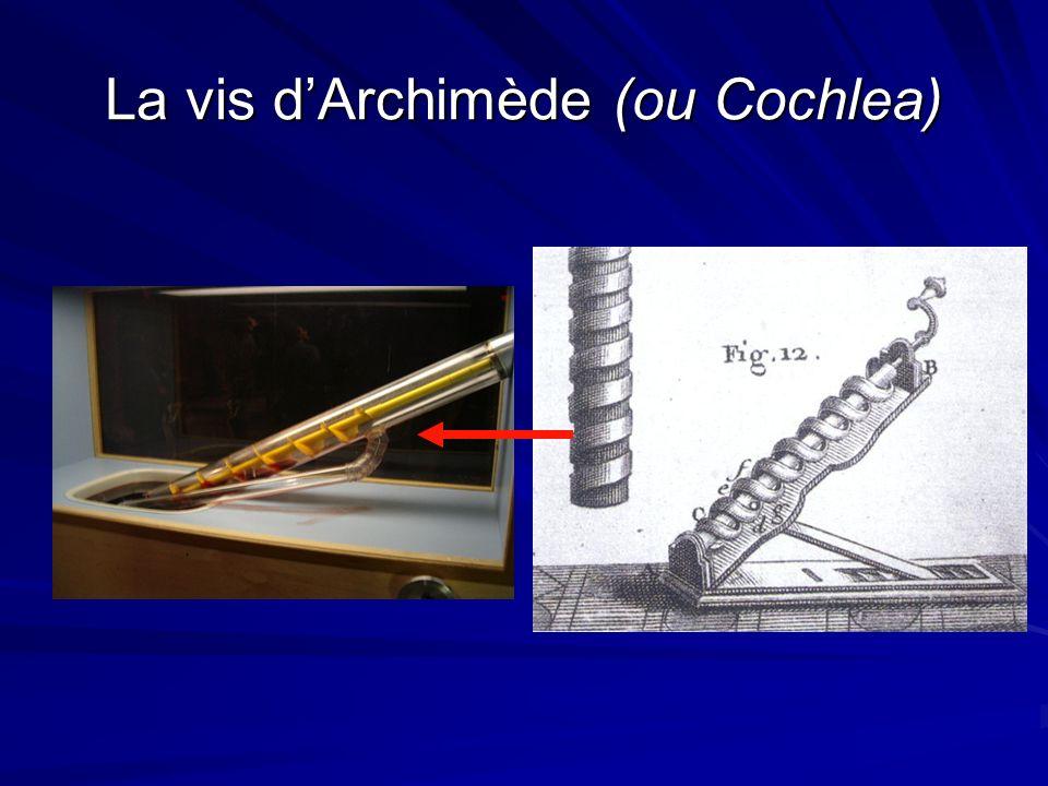 La vis dArchimède (ou Cochlea)