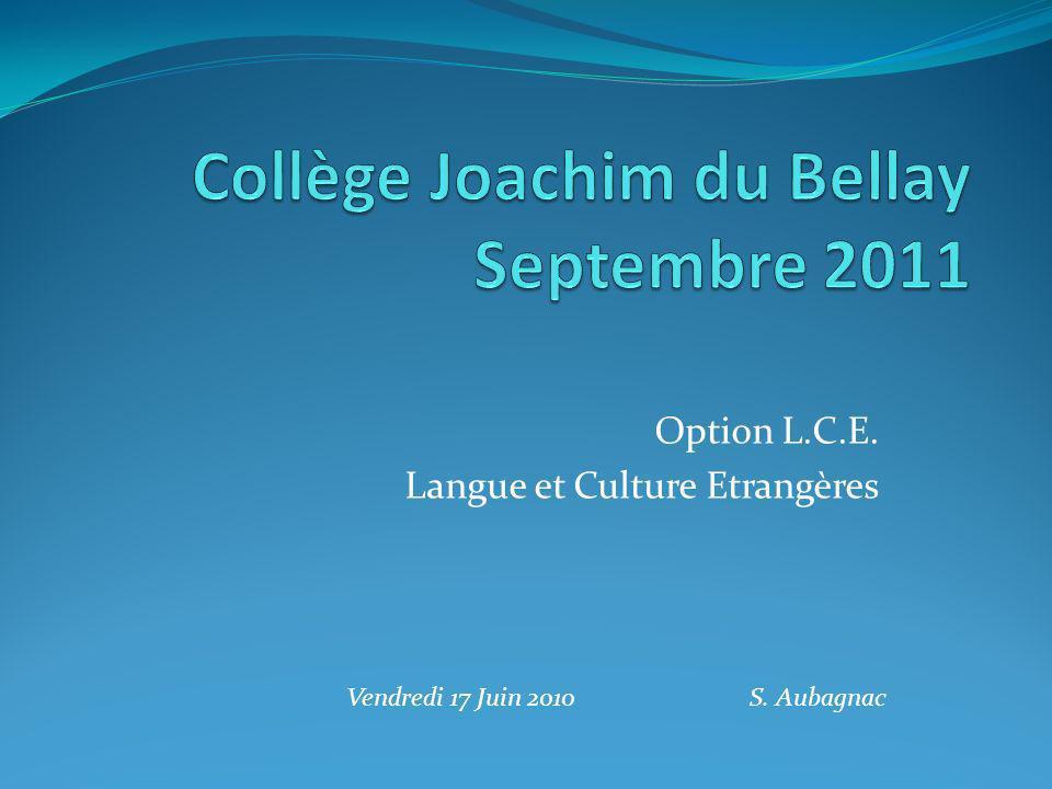 Option L.C.E. Langue et Culture Etrangères Vendredi 17 Juin 2010 S. Aubagnac