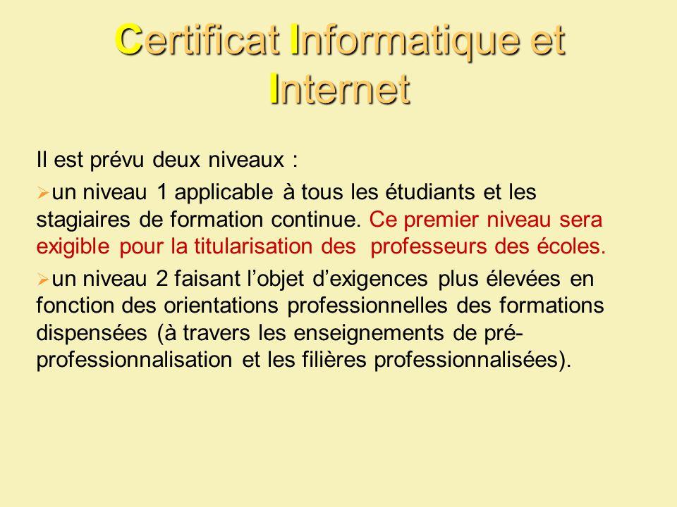 Certificat Informatique et Internet Il est prévu deux niveaux : un niveau 1 applicable à tous les étudiants et les stagiaires de formation continue. C