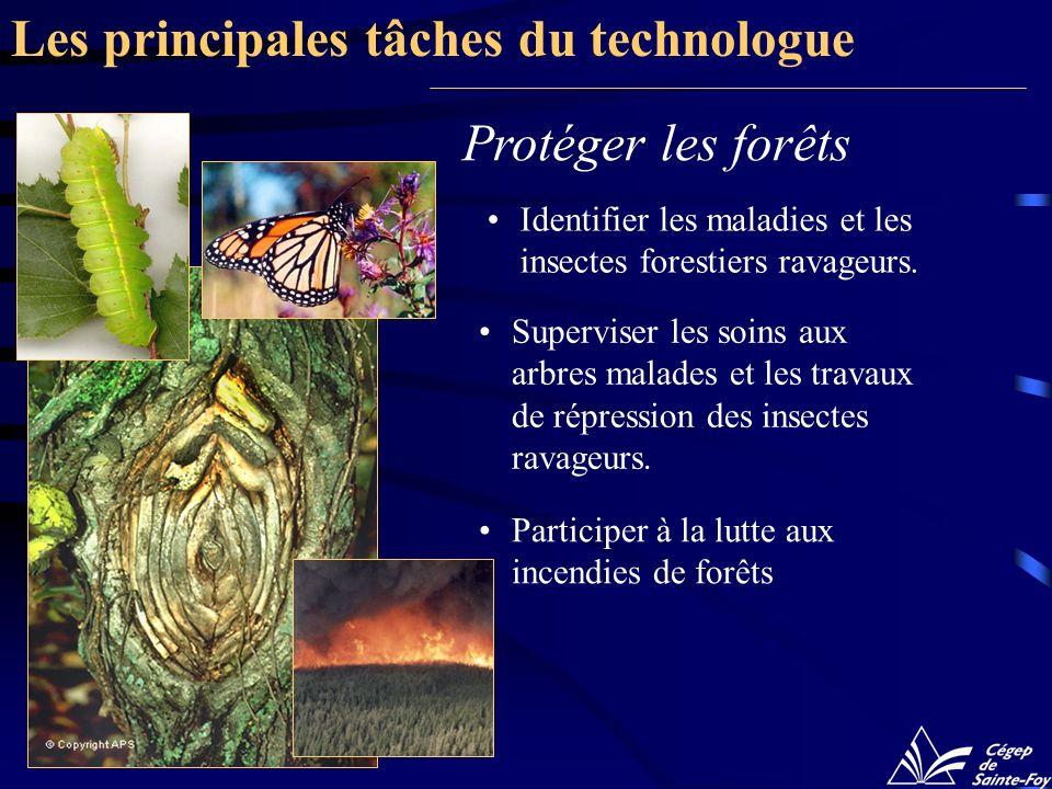 Protéger les forêts Identifier les maladies et les insectes forestiers ravageurs. Superviser les soins aux arbres malades et les travaux de répression