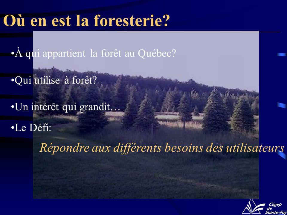 Où en est la foresterie? À qui appartient la forêt au Québec? Qui utilise à forêt? Un intérêt qui grandit… Le Défi: Répondre aux différents besoins de