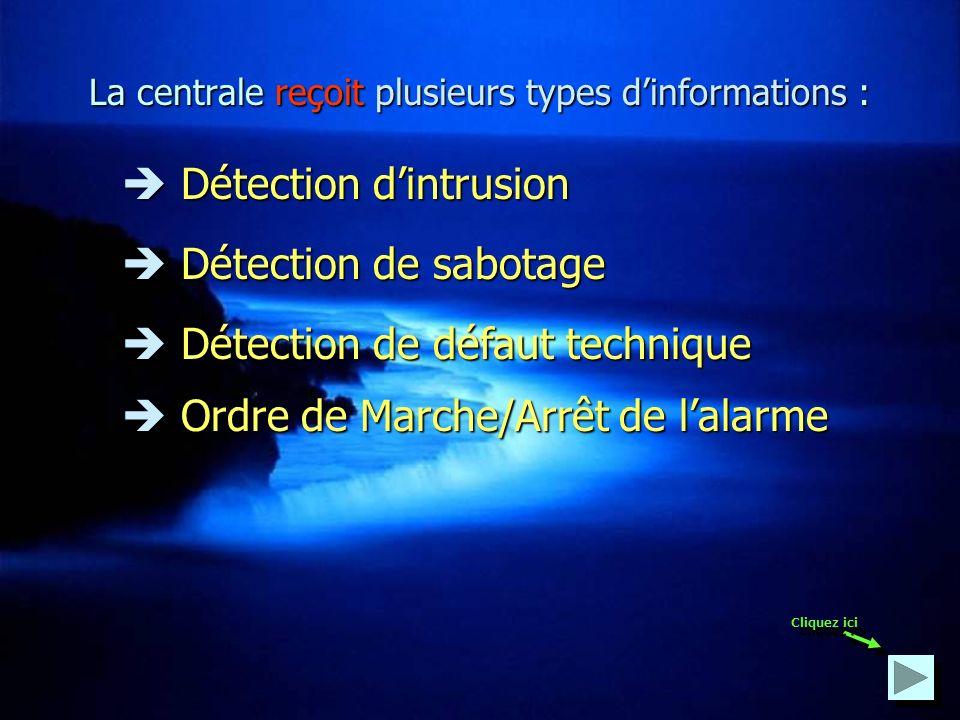 La centrale Cest le cœur du système. Elle reçoit les informations émanant des détecteurs et déclenche les appareils de dissuasion et dalerte. Cliquez