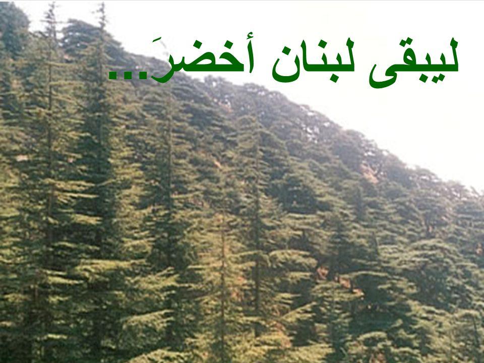 Pour un Liban Toujours Vert …