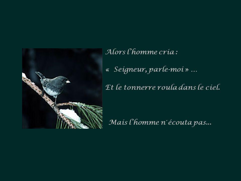 Un jour, quelqu'un murmura : « Seigneur, parle-moi » … Et un oiseau chanta. Mais lhomme ne lentendit pas...