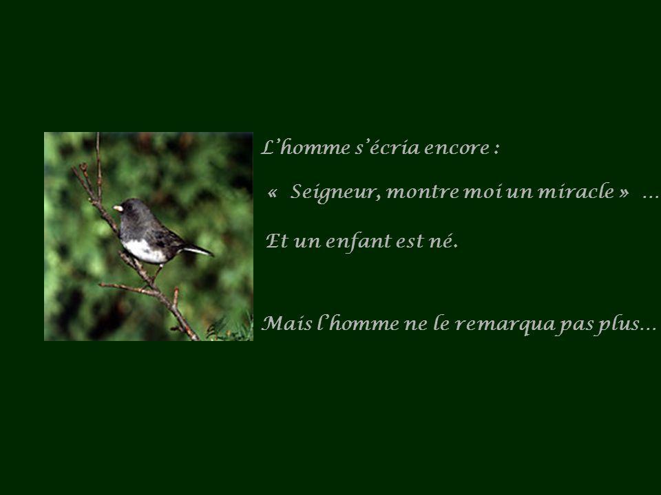 Lhomme sécria encore : « Seigneur, montre moi un miracle » … Et un enfant est né.