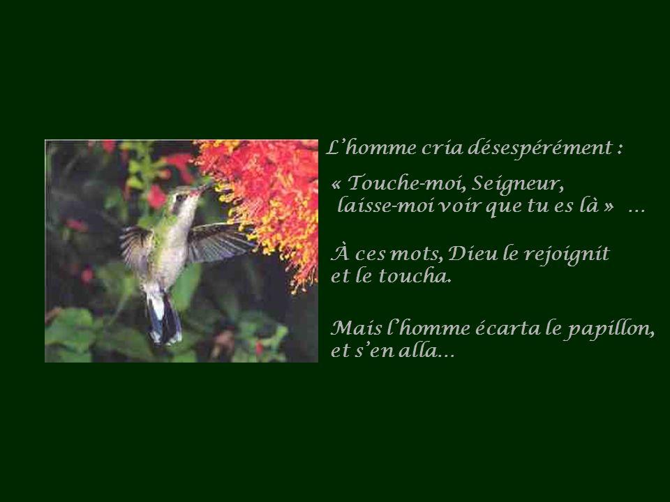 Lhomme cria désespérément : « Touche-moi, Seigneur, laisse-moi voir que tu es là » … À ces mots, Dieu le rejoignit et le toucha.