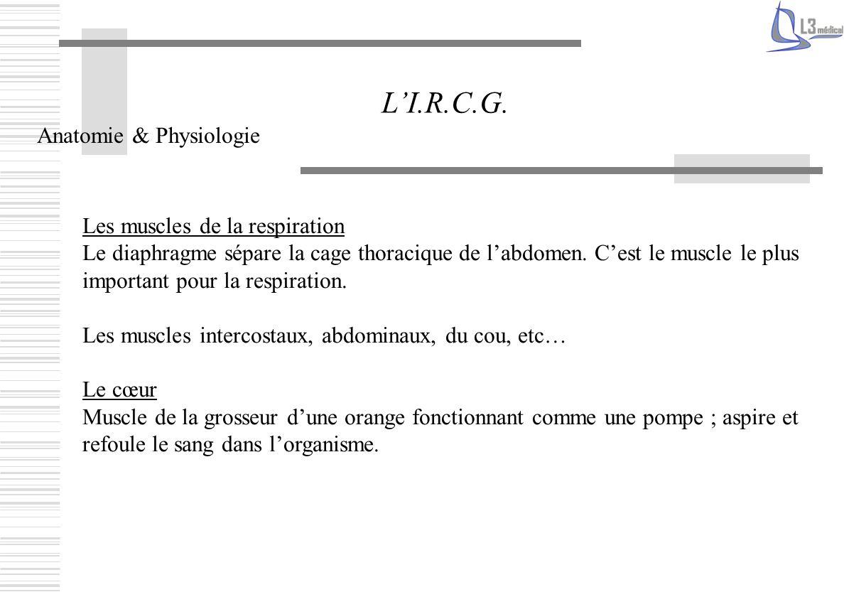 Les pathologies restrictives LI.R.C.G.