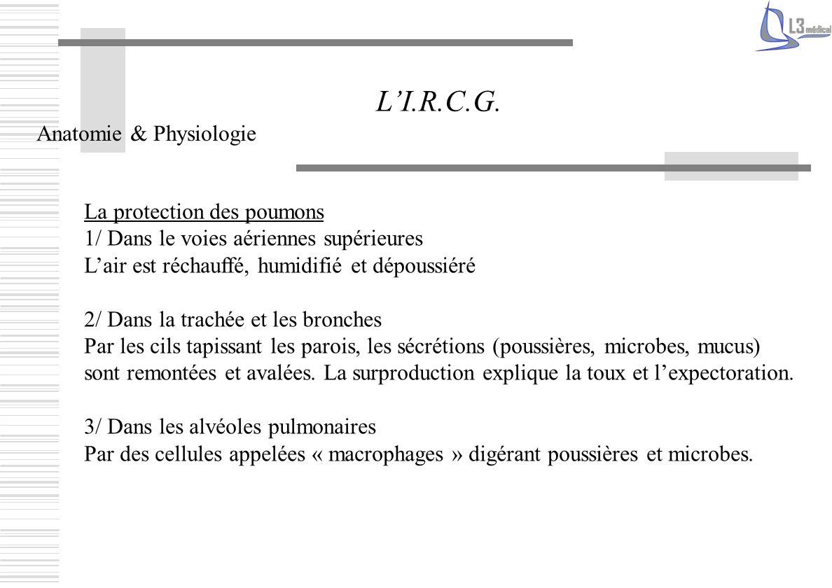 Les Examens LI.R.C.G.