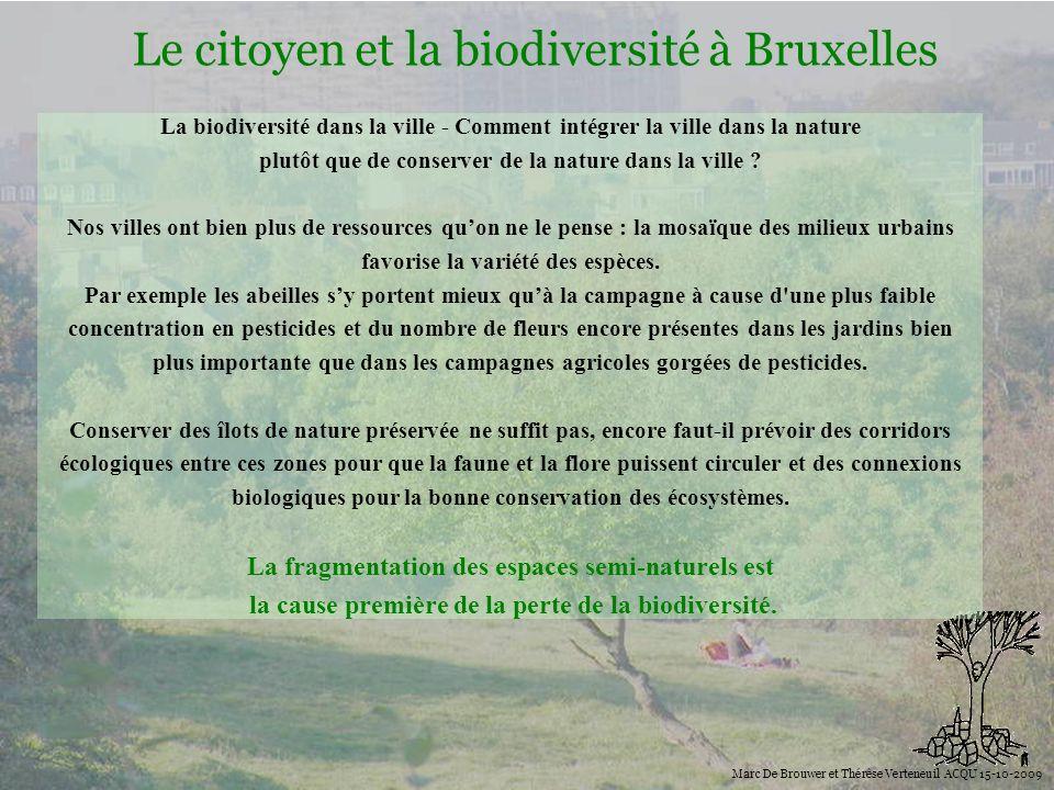 Biodiversité Le citoyen et la biodiversité à Bruxelles Marc De Brouwer et Thérèse Verteneuil ACQU 15-10-2009 La biodiversité dans la ville - Comment i
