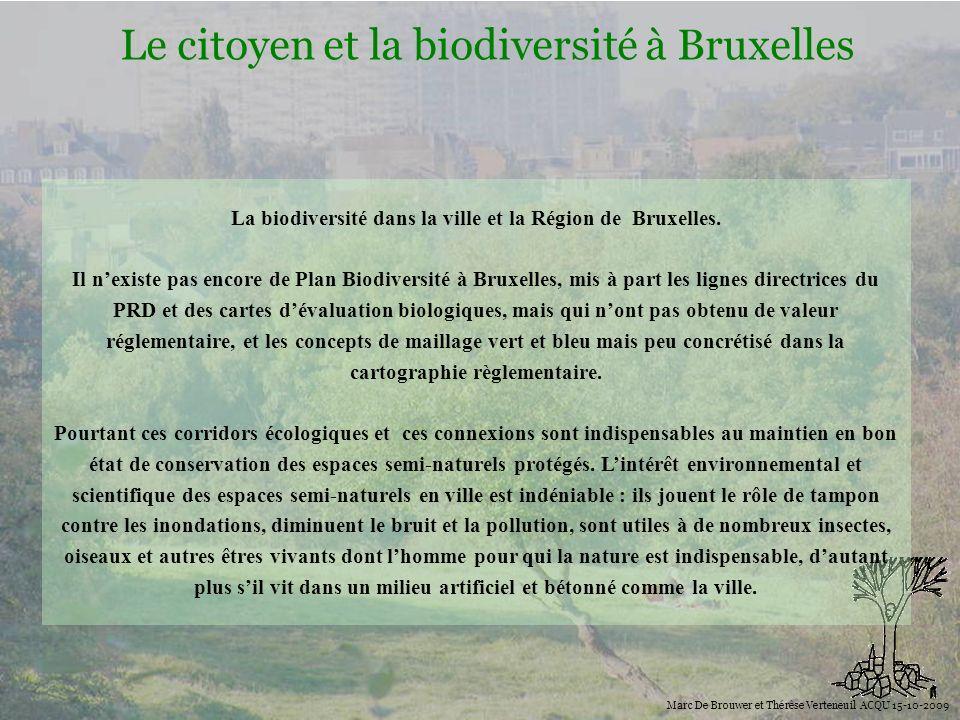 Biodiversité Le citoyen et la biodiversité à Bruxelles Marc De Brouwer et Thérèse Verteneuil ACQU 15-10-2009 La biodiversité dans la ville et la Régio