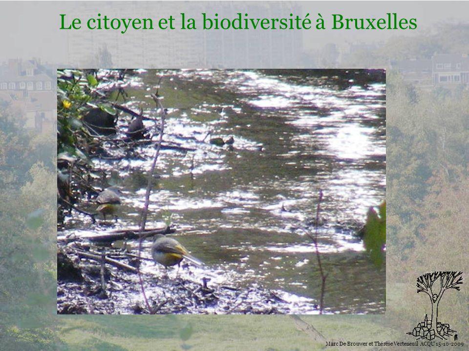 Biodiversité Le citoyen et la biodiversité à Bruxelles Marc De Brouwer et Thérèse Verteneuil ACQU 15-10-2009 Des propositions pour plus de biodiversité dans la ville